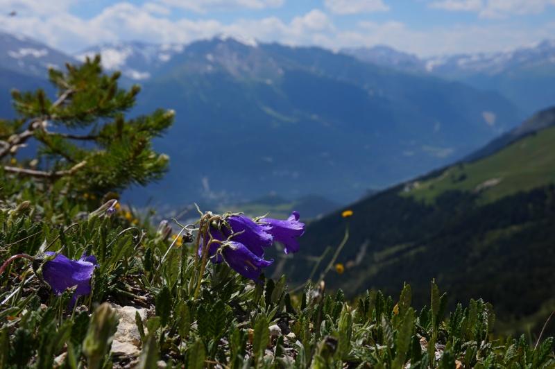 La beauté des paysages et la spiritualité sont aussi des contributions de la nature à notre bien être. On les appelle des services culturels.
