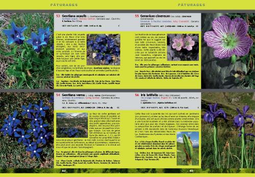 Exemple de page intérieure