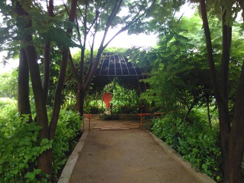 Jardin Jet d'Eau