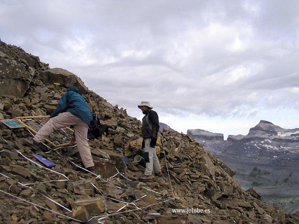 GLORIA étude, dans les Pyrénées
