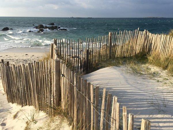 Les ganivelles protègent les dunes, respectons les !
