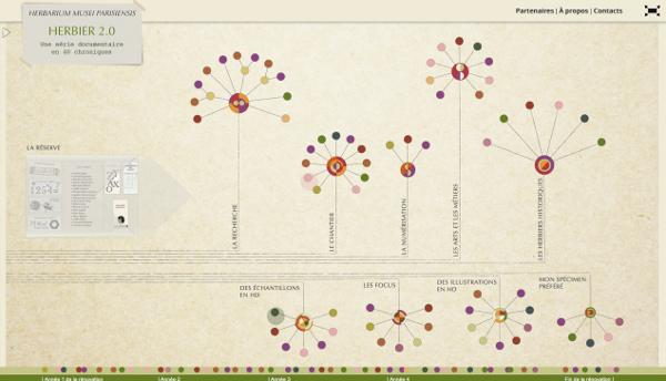 Page d'accueil du site Herbier 2.0 ( © Ex Nihilo - Look at sciences)