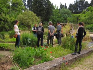 Visite du Jardin de Montpellier