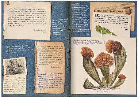 Exemple de fac similé © Plume de carotte