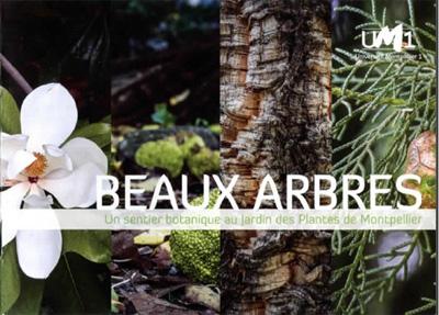 un livret pour d couvrir les plus beaux arbres du jardin des plantes de montpellier. Black Bedroom Furniture Sets. Home Design Ideas