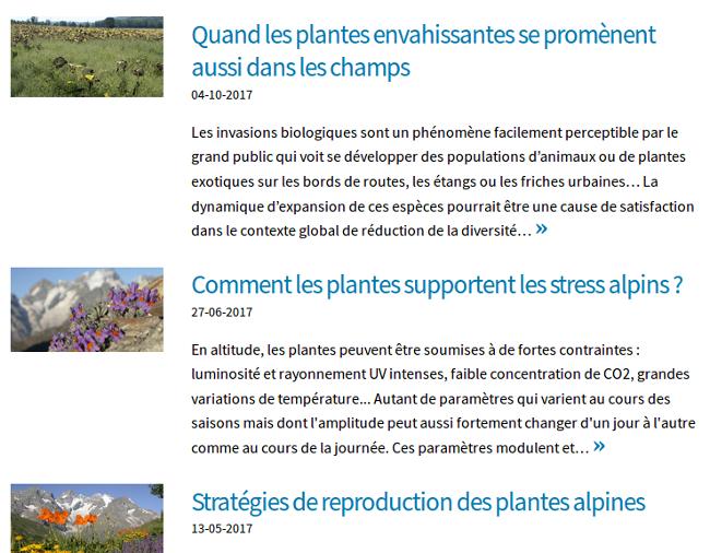 Quelques articles sur les plantes