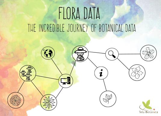 Feuillet Flora Data