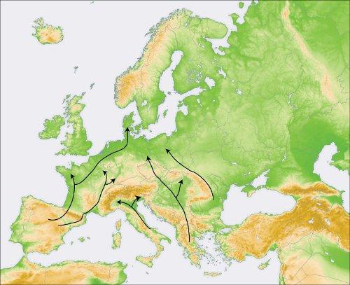 Figure 2 : Hypothétiques voies de recolonisation empruntées par M. sylvestris à la fin du dernier âge glaciaire, au début de l'Holocène, il y a 10000 ans.