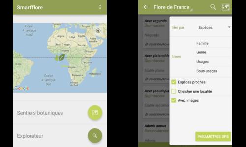 Interface de choix entre les deux sections et filtre de recherche