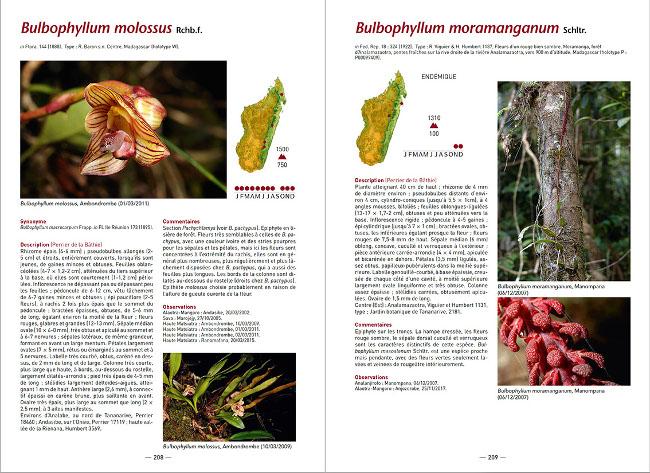 Exemple de pages intérieures
