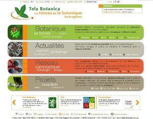 Site de Tela - 2010