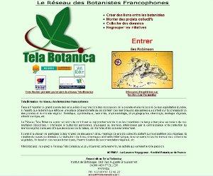 <strong>Le site internet en 2003</strong>«/><figcaption><strong>Le site internet en 2003</strong></figcaption></figure> <p>En 2003 www.tela-botanica.org était déjà sur la toile depuis 3 ans.</p> <figure>                       <img src=