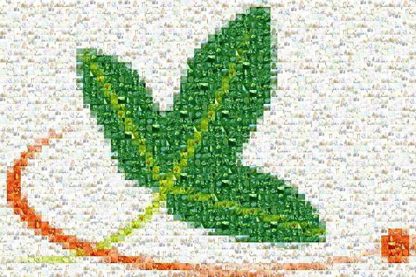 Une mosaïque d'images du Réseau formant le logo Tela