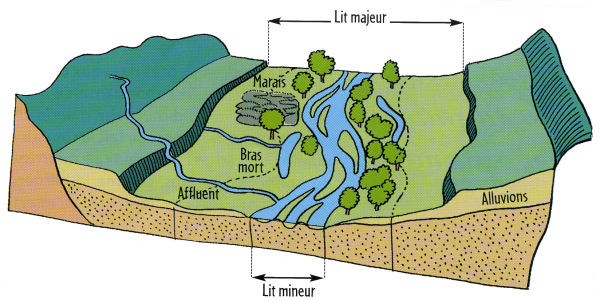 Prairies alluviales