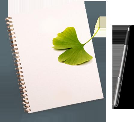Cahier et stylo, avec une feuille de Ginkgo-biloba