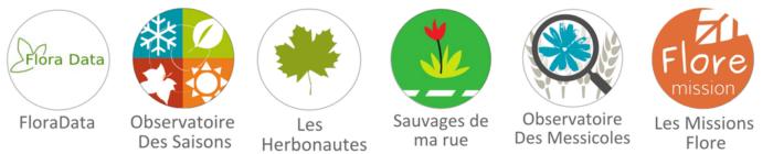 Science participative : les programmes de Tela Botanica