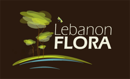 Logo de Leban flora