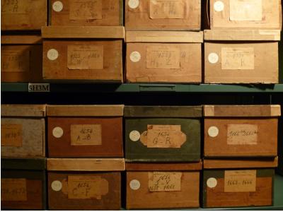 illustration d'herbiers conservées dans des boites