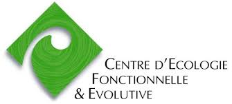 logotype CEFE