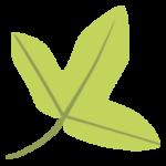 Actualités – Tela Botanica