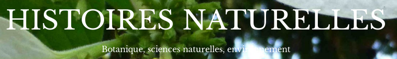 logotype Histoires naturelles
