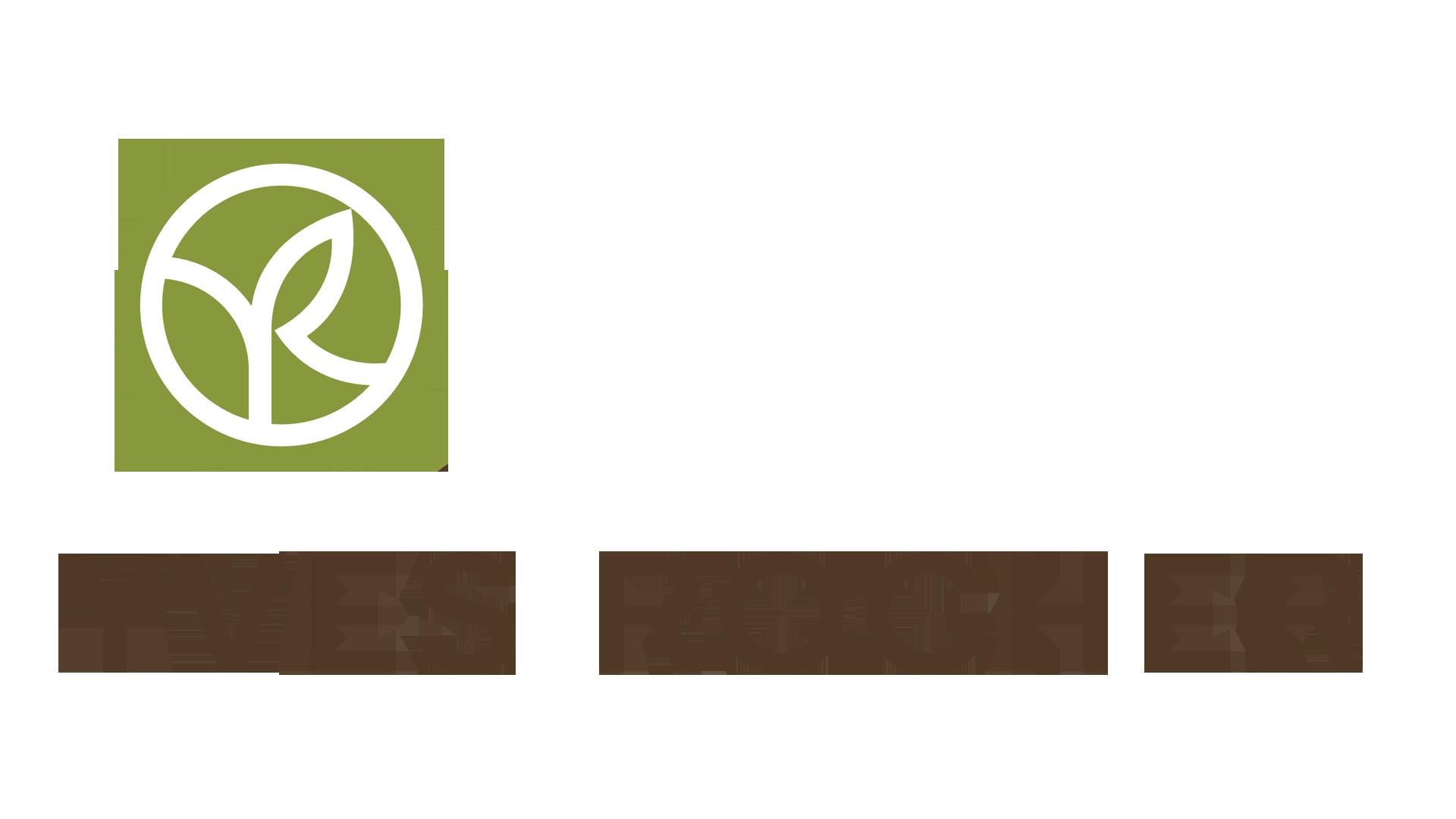 logotype Yves Rocher