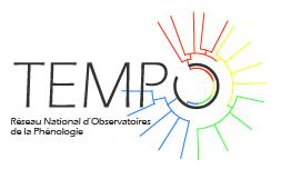 logotype Tempo