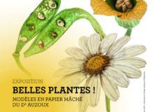 Affiche de l'exposition Belles Plantes