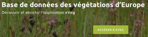 Page outil d'eVeg du site Internet de Tela Botanica - CC BY-SA Tela Botanica