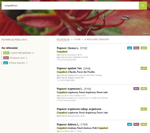 """Page Flore pour la recherche """"Coquelicot"""" du site Internet de Tela Botanica - CC BY-SA Tela Botanica"""