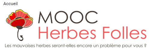Bientôt le MOOC Herbes Folles