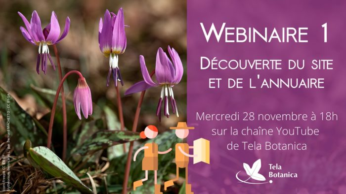 Le site et l'annuaire de Tela Botanica