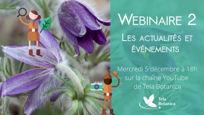 Les actualités et évènements sur Tela Botanica