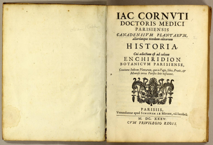 Canadensium Plantarum par Jacques-Philippe Cornut