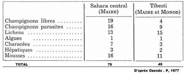 Tableau : Les cryptogames « sahariens »
