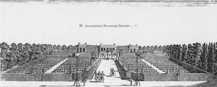 Le jardin botanique d'Uppsala, à l'époque de Linné