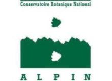 cbn alpin