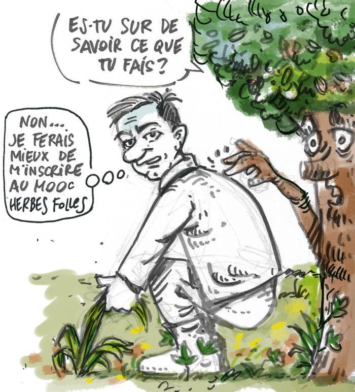 Illustration MOOC Herbes Folles - Frédéric Duriez