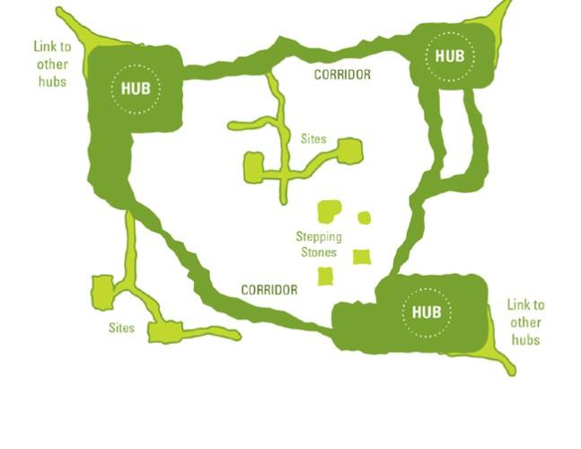 Les « hubs » représentent les grandes réserves et le reste des connexions. Source : https://www.surrey.ca