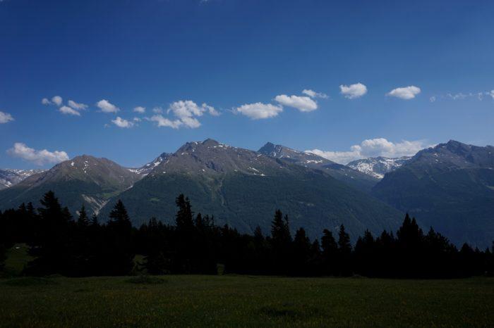 En France, les Alpes et les Pyrénées représentent les derniers espaces encore naturels où les espèces peuvent se développer normalement