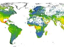 This map shows the predicted levels of risk to more than 150,000 species of plants located worldwide. Using vast amounts of open-access data, the researchers trained a machine learning algorithm to assign a probability that a given species would qualify for at-risk designation on the International Union for the Conservation of Nature's Red List of Threatened Species. Warmer colors denote areas with larger numbers of potentially at-risk species, while cooler colors denote areas with low overall predicted risk