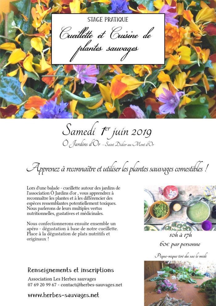 2019_06_01_Cuisine_Sauvage_OJardinsdOr-page001