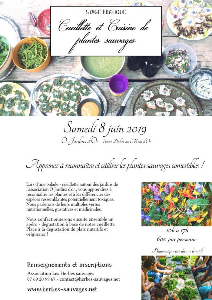 2019_06_08_Cuisine_Sauvage_OJardinsdOr-page001