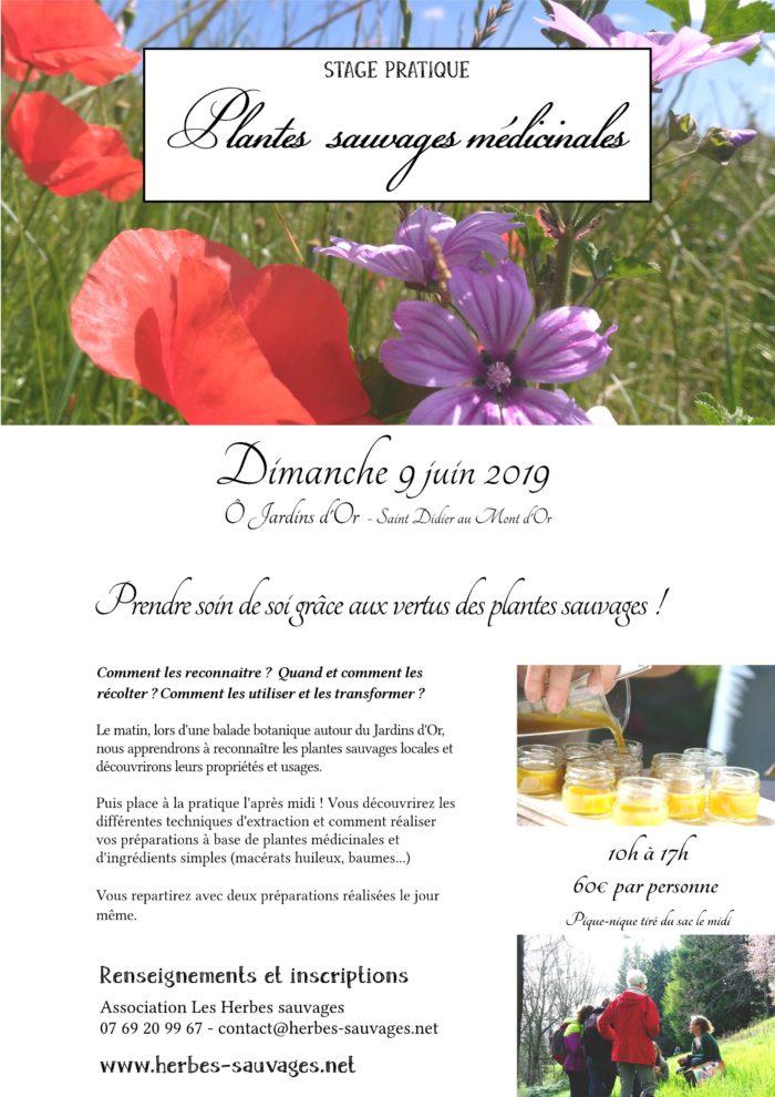 2019_06_09_PlantesMedicinales_OJardinsdOr-page001