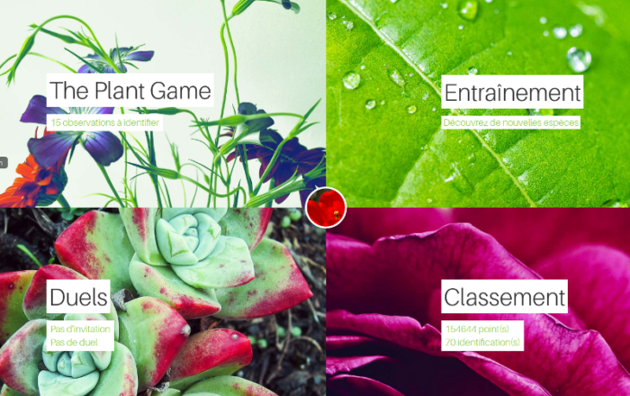 the plant game