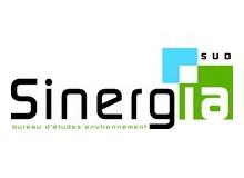 Sinergia-sud-logo