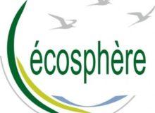logo-ecosphere