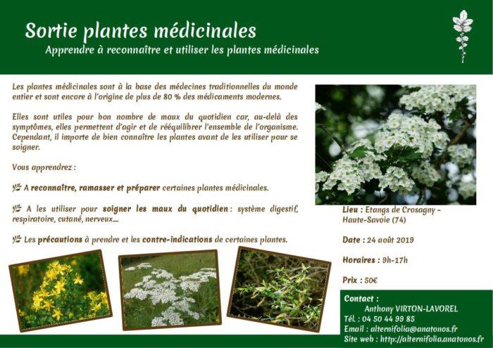 2019-08-24 plantes-medicinales