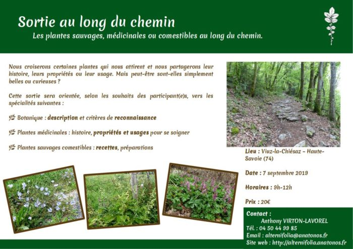 2019-09-07 au-long-du-chemin