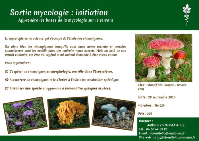 2019-09-28 mycologie-initiation